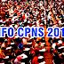 Ada 250 Ribu Lowongan CPNS Tahun 2018. Berikut Bocoran Formasinya !!