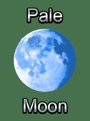 Palemoon Portable