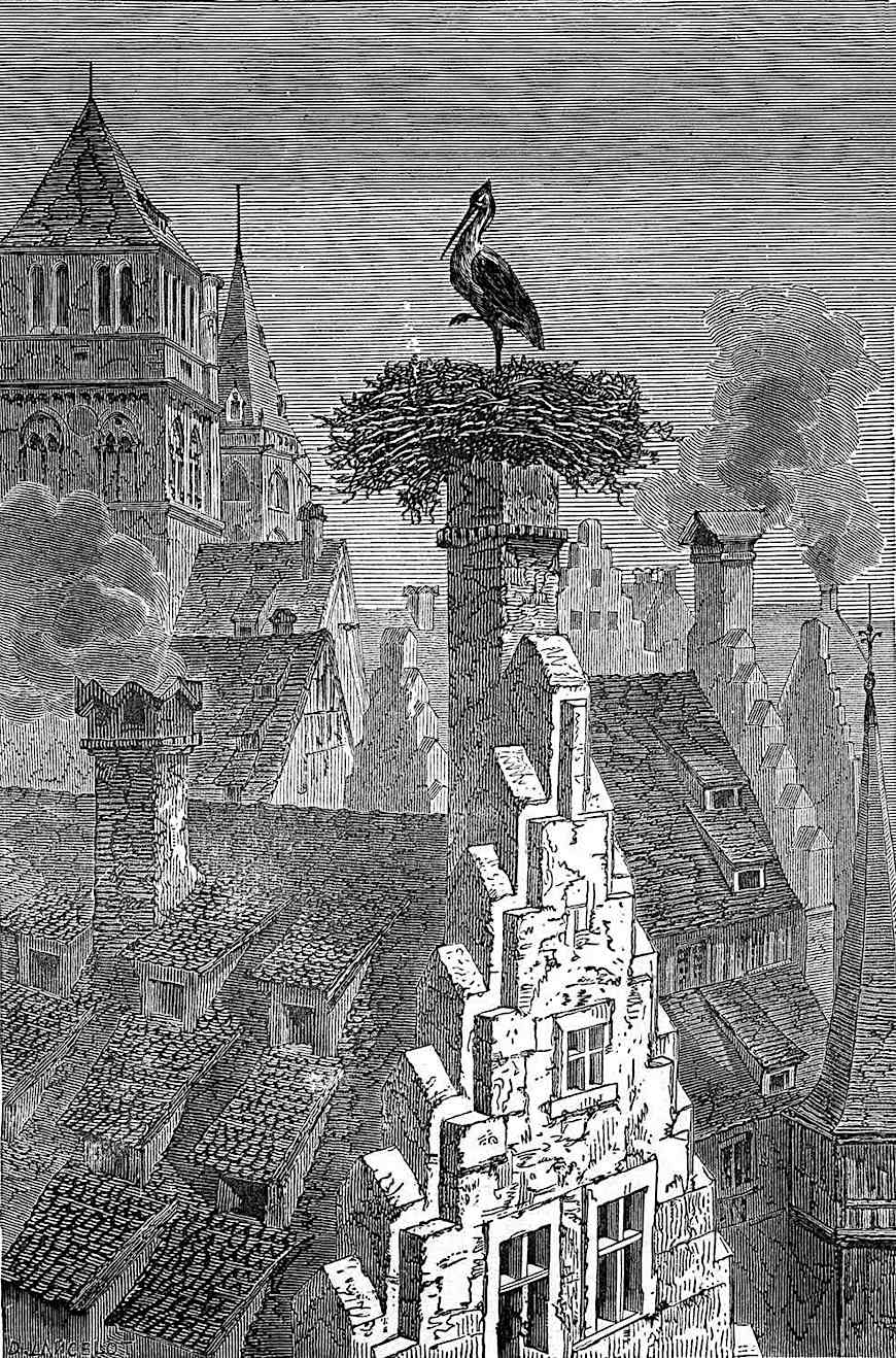 an illustration of a crane building a nest on a chimney