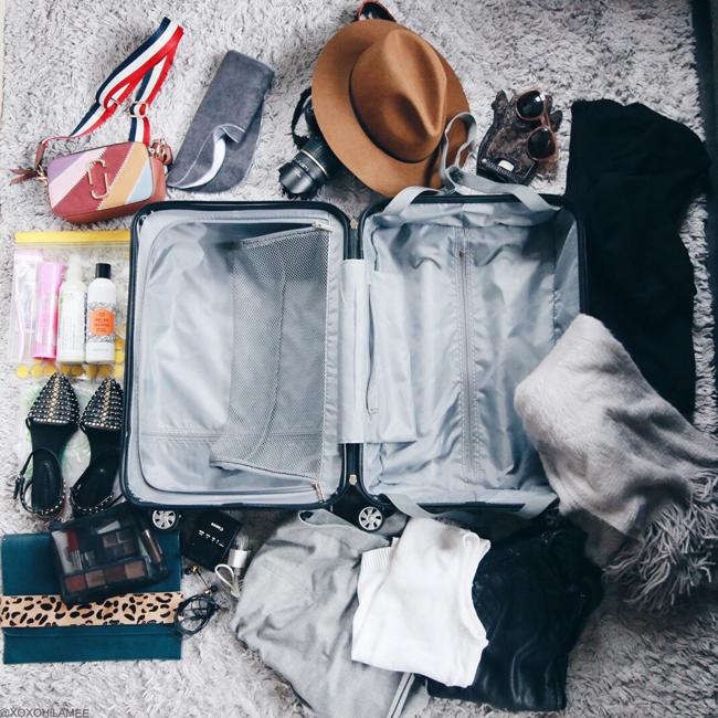 日本人ファッションブログ,NEW IN,Centurion スーツケース、旅行鞄、旅行計画、キャリーバッグ、Sサイズ、シティバイオレット、パッキング、小トリップ