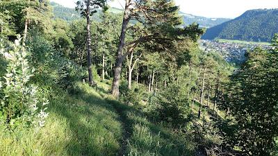 Unterwegs auf dem Ellbogen-Trail
