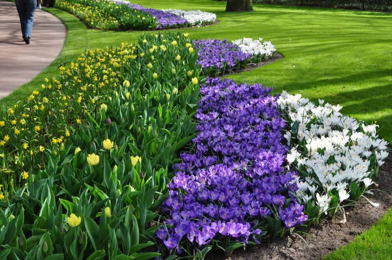 Arte y jardiner a arriates ornamentales en el jard n for Jardines con arboles y arbustos
