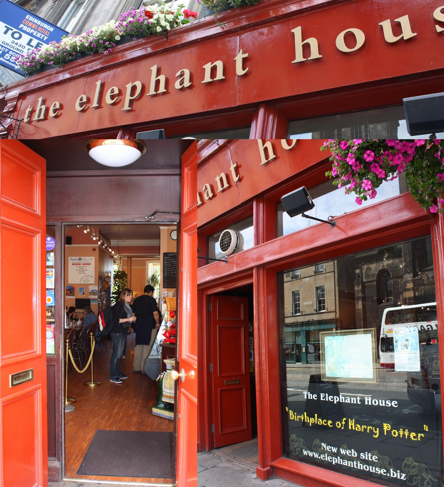 Edinburgh cafés - The Elephant House