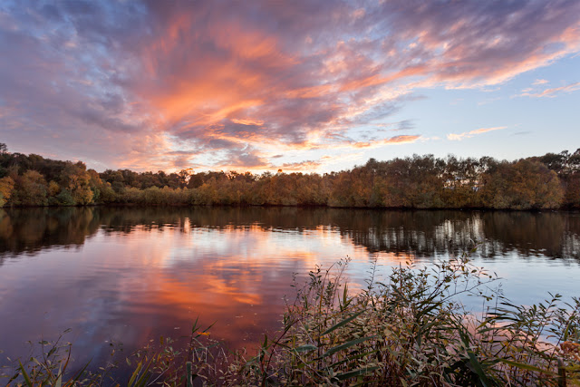 Beautiful red clouds drift over Holme Fen nature reserve at sunset