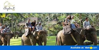 Cari tiket murah lombok elephant park