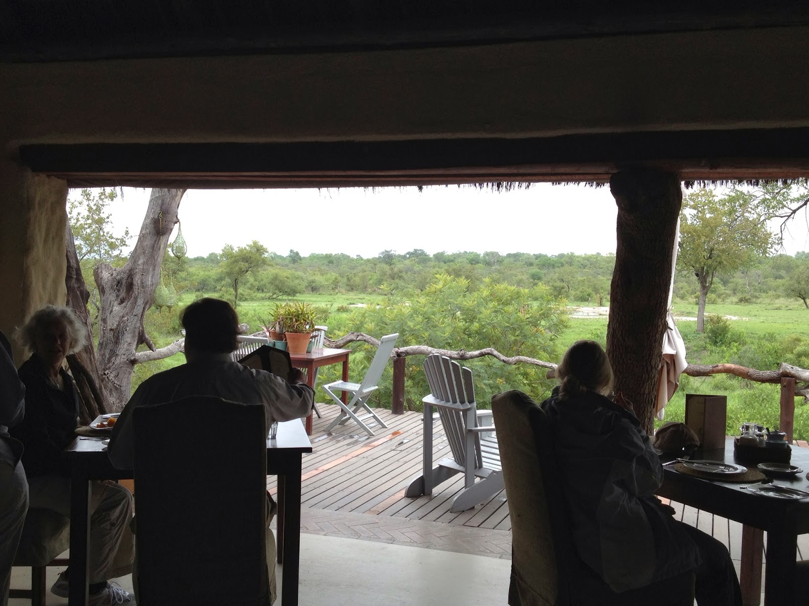Sabi Sands - We have a view of the watering hole from the dining area