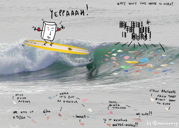 PiPs surfing by @sciencemug