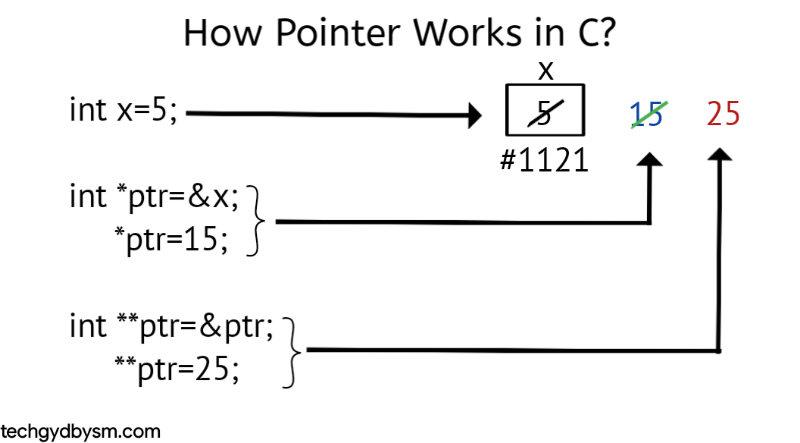 How Pointers Work in C?