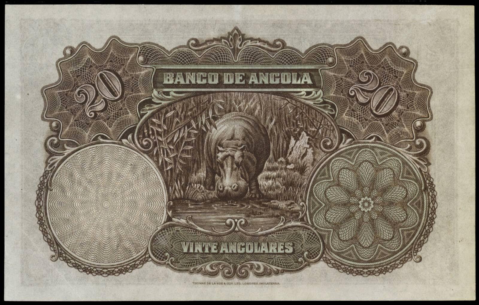 Angola 20 Angolares banknote 1927 Hippopotamus