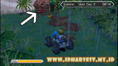 Walkthrough Harvest Moon Innocent Life Summer Minggu Pertama