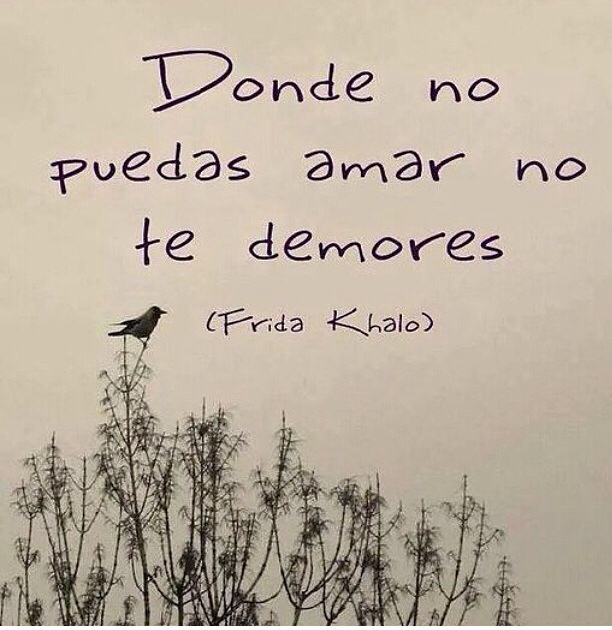 Donde no puedas amar no te demores. -Frida Kahlo.
