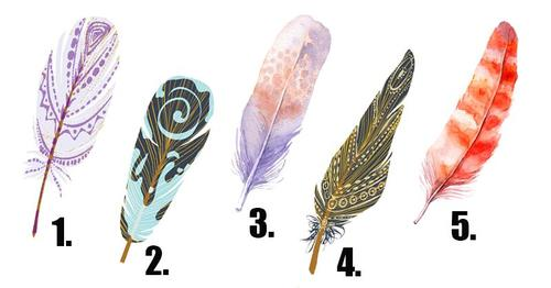 Choose A Feather And Discover Your Most Hidden Desires