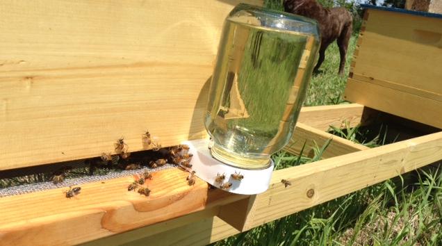 Μέθοδοι τροφοδοσίας μελισσιών