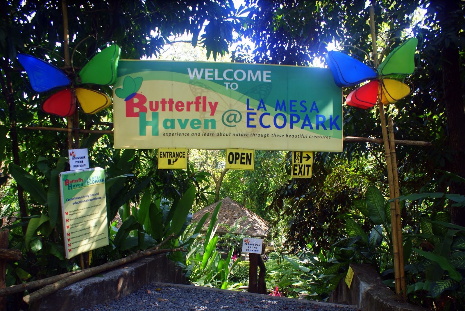 Butterfly sanctuary - La mesa eco park swimming pool photos ...