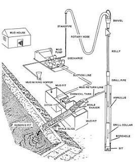 Circulating System