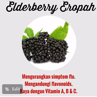 EUROPEAN-ELDERBERRIEs-vivix