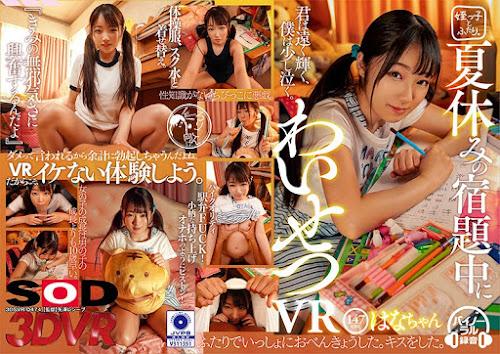 3DSVR-0474