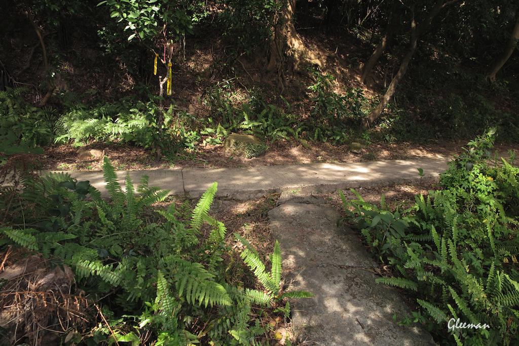 接上圓山風景區的環山步道,往左轉。