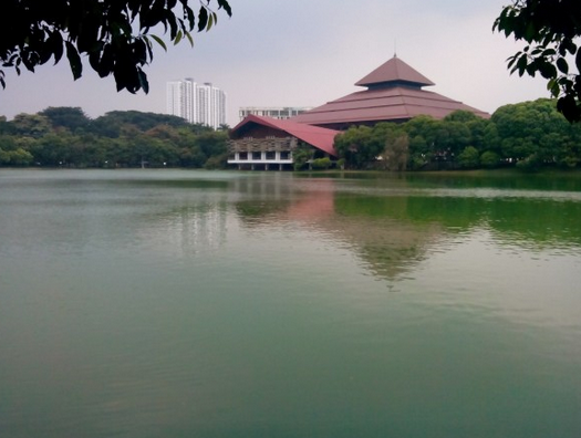 Danau di Kampus Universitas Indonesia