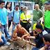 Wilson Castro: abrir elecciones en Venezuela es una necesidad