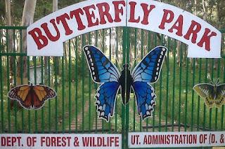 Butterfly park khanvel silvassa