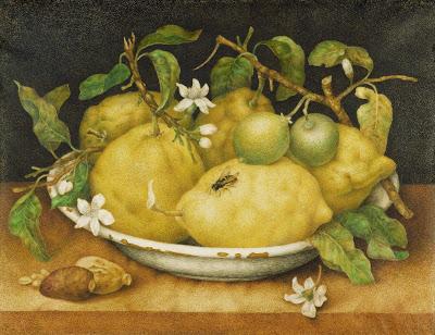 """Giovanna Garzoni """"Nature Morte au Plat de Citrons"""" Vers 1640 Baroque Italien"""