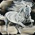 Hình nền con ngựa cho điện thoại Android