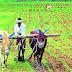 श्रीगोंद्यात 10 हजार 300 शेतकऱ्यांना कर्जमाफी.