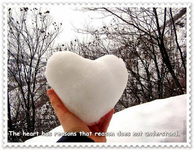 Things to Think  the heart has reasons that reason does not understand