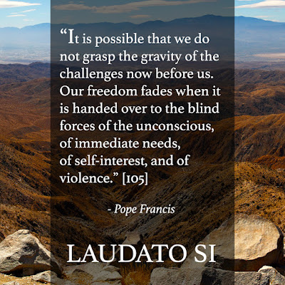 Good News for the Digital Pews: Laudato Si Thursday - Week 6