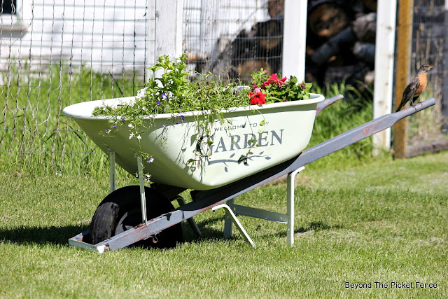 junky planter, old wheelbarrow, stencils, fusion mineral paint, garden junk, http://bec4-beyondthepicketfence.blogspot.com/2016/05/welcome-to-my-gardenstencil-paint.html