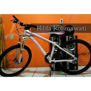 Jenis-Jenis Sepeda MTB ( Mountain Bike ) ~ JENDELA HOBI