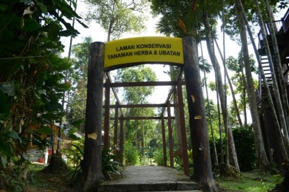 Taman Botani Shah Alam Taman Rempah Ratus Pelbagai Minuman