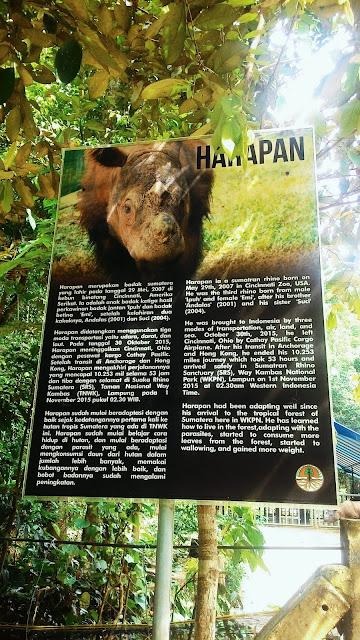 Jumlah badak di SRS Taman Nasional Way Kambas