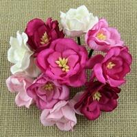 https://www.artimeno.pl/-magnolias/7459-wild-orchid-crafts-magnolias-magnolie-rozowe-mix-5szt.html