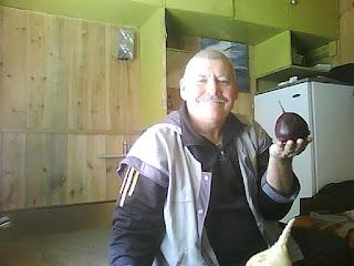 Корнеплод обыкновенной (столовой) свеклы