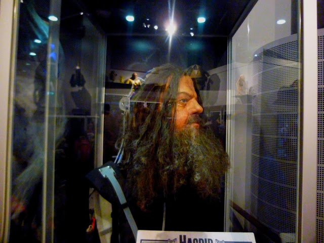 Hagrid remote control head