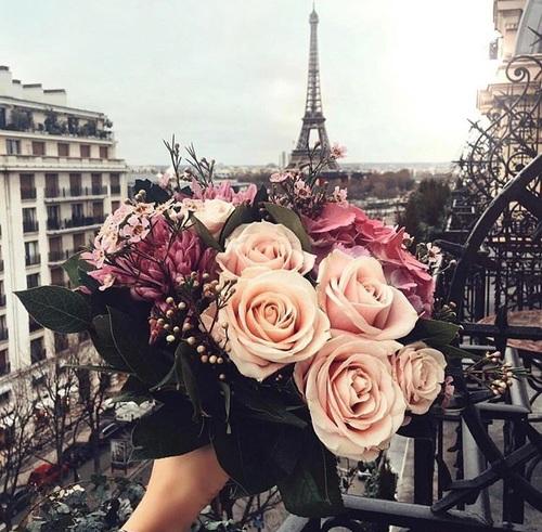 صور من باريس فى الصباح والمساء