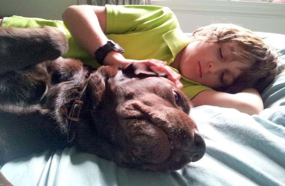Focus on Life: Week 12 ~ Expression : A boy and his dog :: All Pretty Things