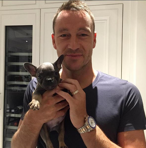 Chelsea captain John Terry gets new dog, names him after club