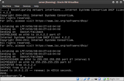 /etc/init.d/networking restart