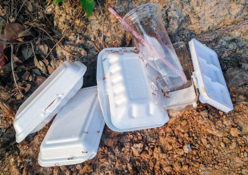 embalagem de esferovite polui jardim