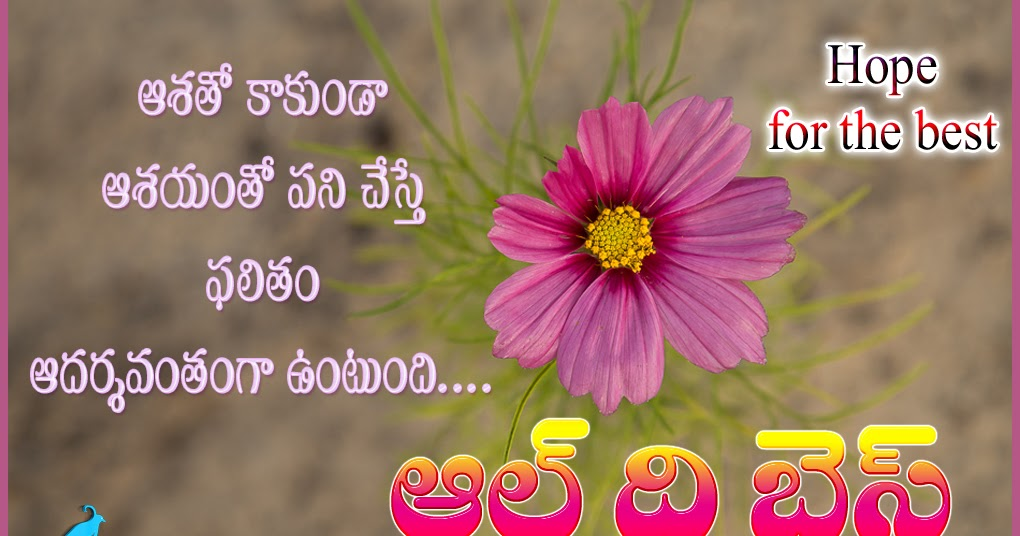All Top Quotes Telugu Quotes Tamil Quotes English Quotes Enchanting All Quotes Telugu