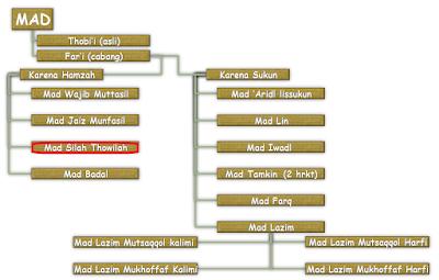 Contoh dan Hukum Bacaan Mad Shilah Thawilah