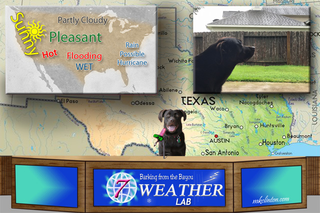 BFTB NETWoof Weather with Paisley the Weather Lab