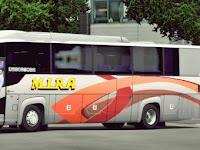 Bus Scorking MH v1.22 - v1.32