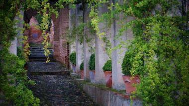 Curiosidades sobre los Jardines de la Alhambra y el Generalife
