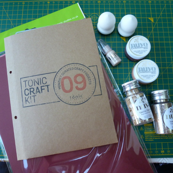 Tonic studios craft kit 09 monthly subscription box for adult crafters what is inside review craftymarie