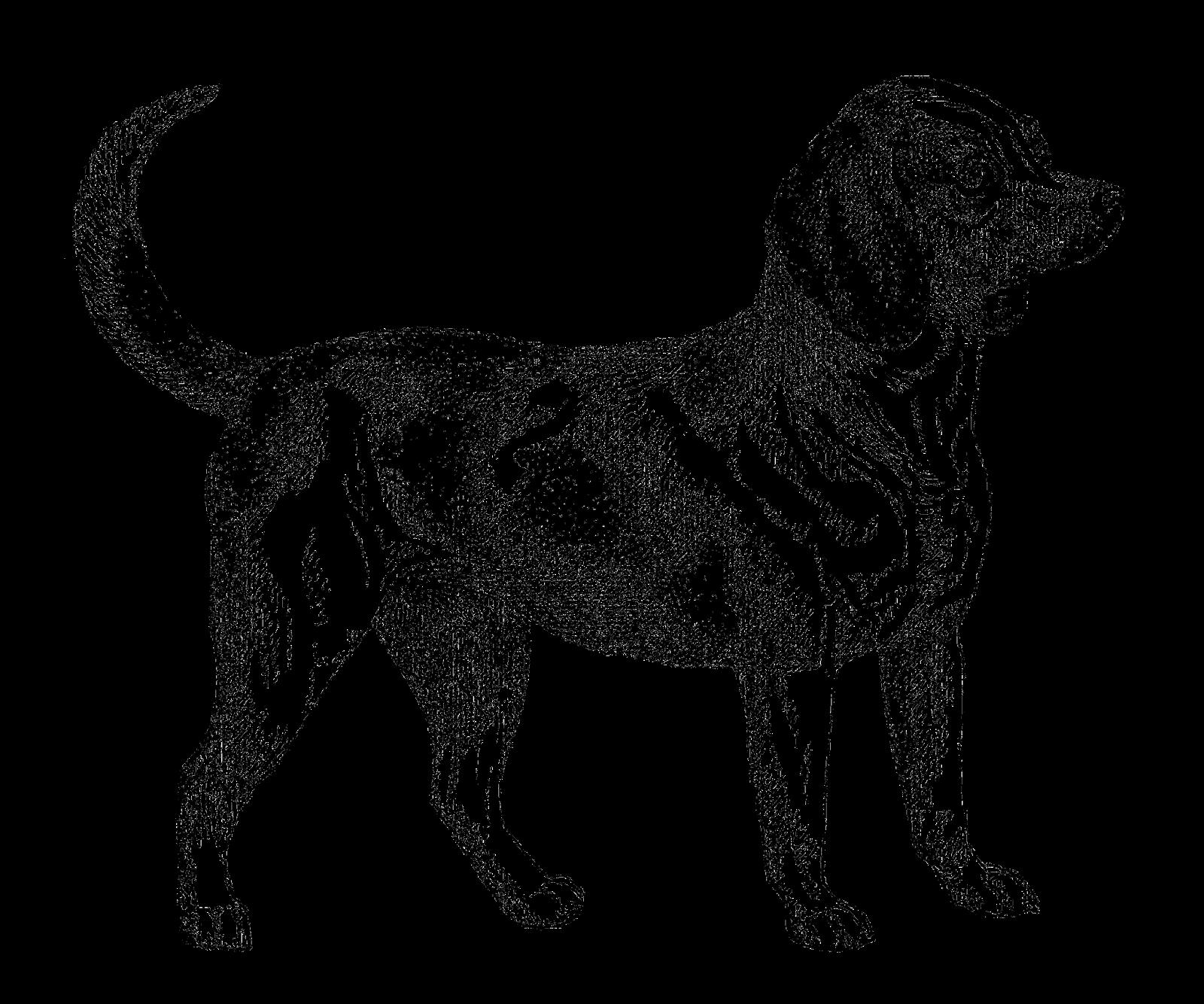Antique Images Digital Download Of Beagle Dog Clip Art