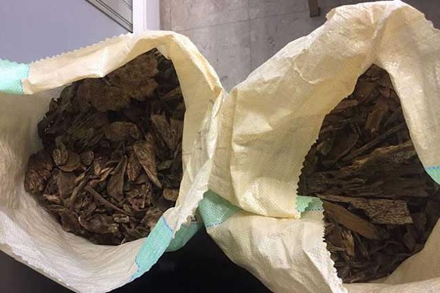 7 மில்லியன் ரூபா பெறுமதியான வல்லபட்டைகளுடன் மூவர் கைது